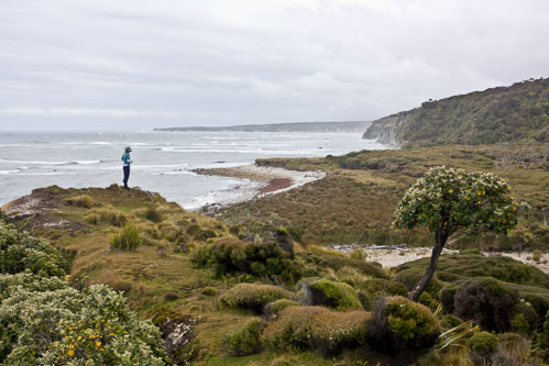 _MG_7133-Cilla-Coastal-NZ.jpg